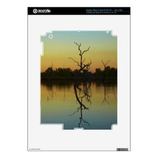 Los árboles muertos reflejaron en la laguna de la  iPad 3 pegatinas skins
