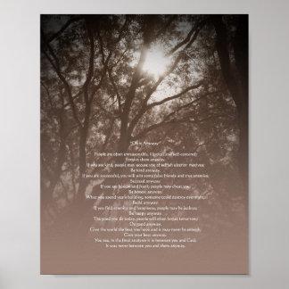 """Los árboles que brillan intensamente """"lo hacen de  póster"""