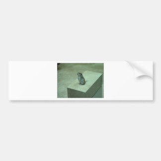 ¡Los aullidos del ratón del asesino (leucogaster d Etiqueta De Parachoque
