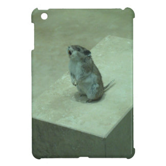 ¡Los aullidos del ratón del asesino (leucogaster d