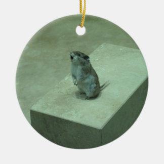 ¡Los aullidos del ratón del asesino (leucogaster Adorno Redondo De Cerámica