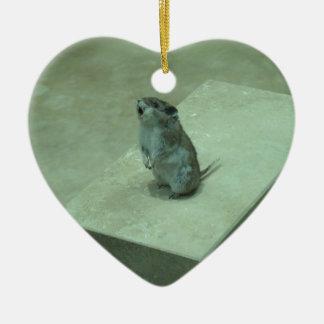 ¡Los aullidos del ratón del asesino (leucogaster Adorno De Cerámica En Forma De Corazón