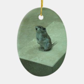 ¡Los aullidos del ratón del asesino (leucogaster Adorno Ovalado De Cerámica