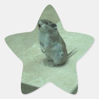¡Los aullidos del ratón del asesino (leucogaster Pegatina En Forma De Estrella