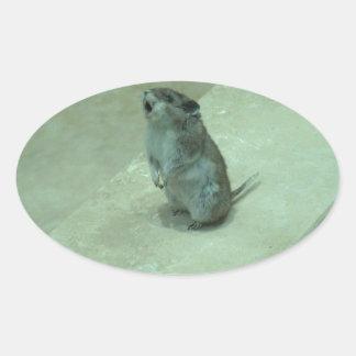 ¡Los aullidos del ratón del asesino (leucogaster Pegatina Ovalada