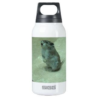 ¡Los aullidos del ratón del asesino (leucogaster