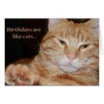 los B-días son como gatos Tarjetón