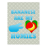los bahaneses son mi Homies Tarjeta Postal