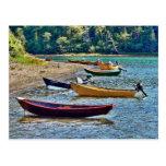 Los barcos de la alga marina de Dulse, Nuevo Postal