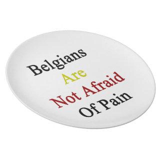 Los belgas no tienen miedo de dolor platos de comidas