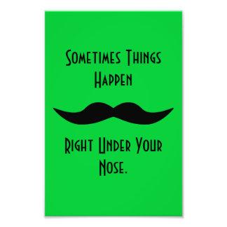Los bigotes suceden fotografías