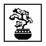 Los bonsais siluetean en pote redondo escultura fotográfica