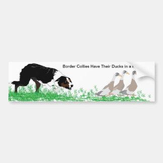 Los borderes collies tienen sus patos en un pegati pegatina de parachoque