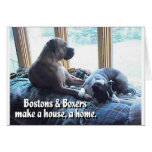 Los boxeadores y Bostons hacen una casa un hogar Felicitacion