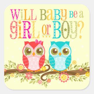 Los búhos chica del bebé o el género del muchacho