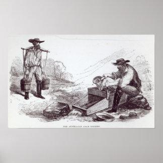 Los buscadores de oro australianos póster