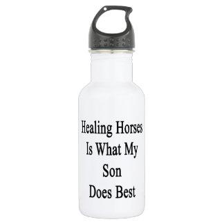 Los caballos curativos son lo que hace mi hijo