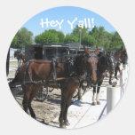 ¡Los caballos de Amish dicen hola! Pegatina Redonda