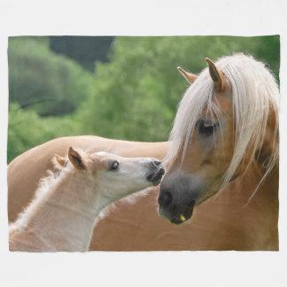 Los caballos de Haflinger paren y yegua que Manta Polar