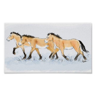 Los caballos de Przewalski de funcionamiento Posters