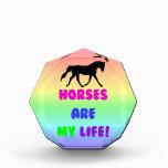 Los caballos lindos son mi premio de la vida