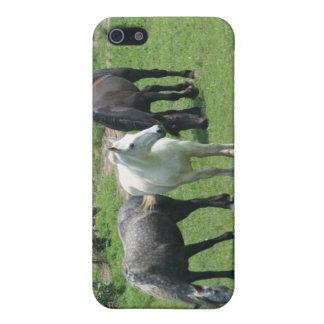 Los caballos, llamo por teléfono al caso iPhone 5 fundas