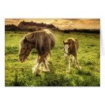 Los caballos miman y paren tarjeta de felicitación