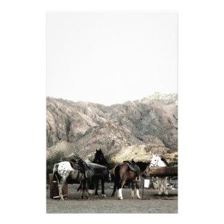 los caballos papelería
