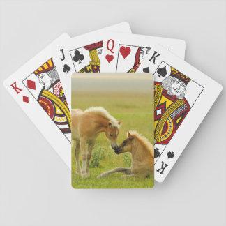 Los caballos paren en campo cartas de juego