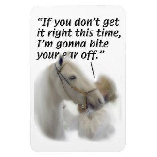 Los caballos - Paso Fino - muerden su oído Imán Foto Rectangular