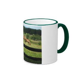 Los caballos pastan en taza del campanero de la