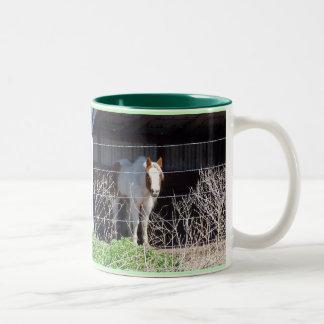 ¡Los caballos son mi cosa!!! Taza De Dos Tonos