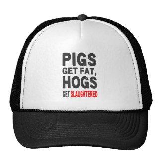 Los cerdos consiguen gordos, los cerdos consiguen gorra