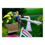 Los chicas apenas quieren divertirse, bicicleta ro felicitación