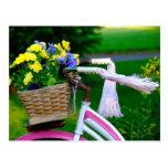Los chicas apenas quieren divertirse, bicicleta ro tarjetas postales