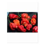 Los chiles más calientes del escorpión de Trinidad Postal