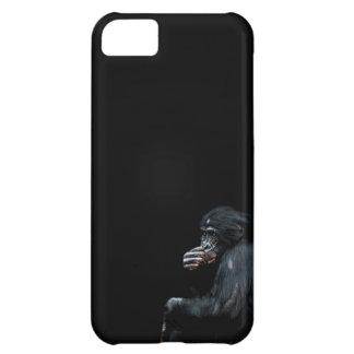 ¡Los chimpancés aquí, pueden yo le ayudan!