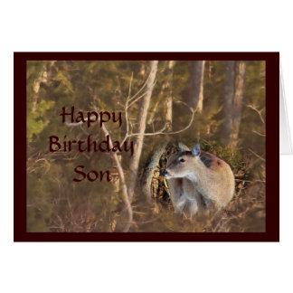Los ciervos 5064 de la gama - modifique cualquier tarjeta de felicitación