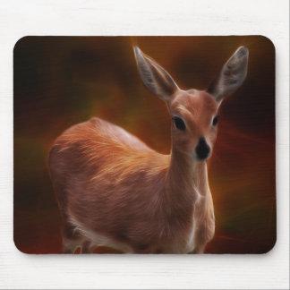 Los ciervos del Steenbok son tan minúsculos Alfombrillas De Ratón