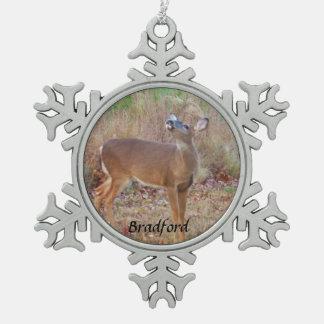 Los ciervos personalizan con nombre