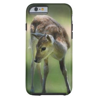 Los ciervos son tan dulces funda resistente iPhone 6
