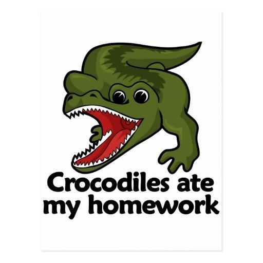 Los cocodrilos comieron mi preparación postal