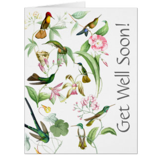 Los colibríes consiguen a pozo pronto todos tarjeta de felicitación grande