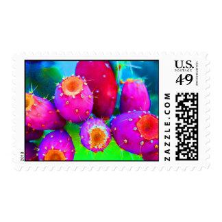Los colores de higos chumbos franqueo
