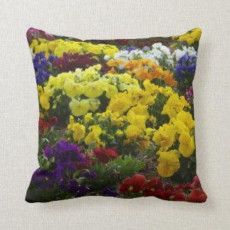 Los colores de la almohada de tiro de la petunia