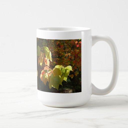 Los colores de las tazas del otoño