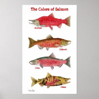 Los colores de salmones póster