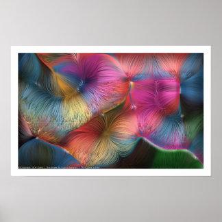 Los colores en pelo póster