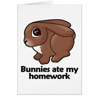Los conejitos comieron mi preparación felicitacion