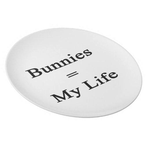 Los conejitos igualan mi vida plato para fiesta